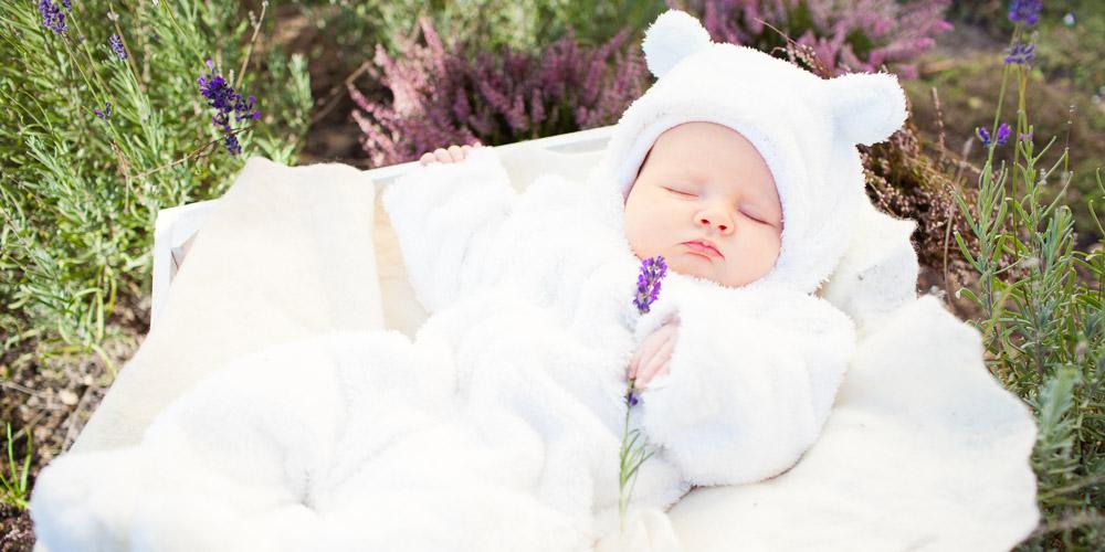 Fotografia niemowlęca | Alicja w Krainie Lawendy