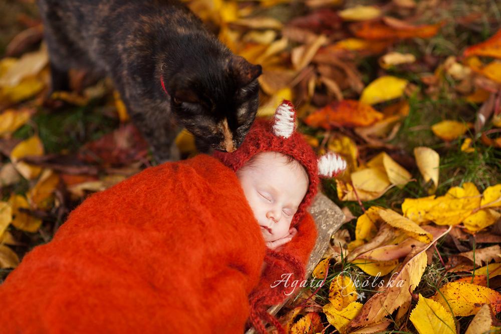 fotografia noworodkowa jesienią